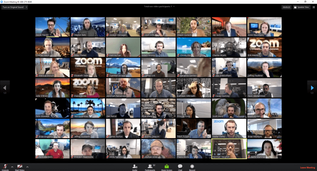 zoom video chat gallery mode example