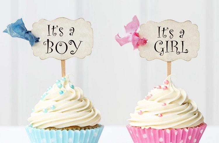 cupcakes with boy and girl signs